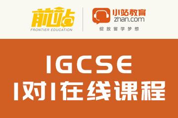 IGCSE1对1在线课程