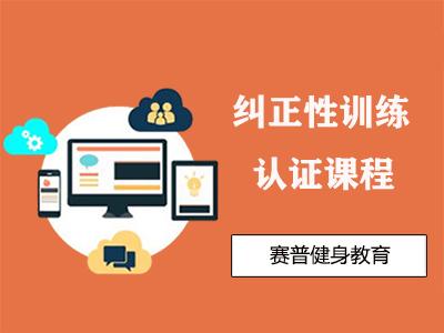 深圳纠正性训练课程