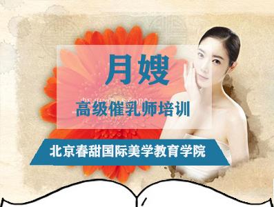 北京高级催乳师培训