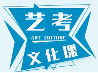长沙艺考文化课8-12人班