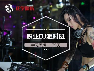 杭州职业DJ派对班